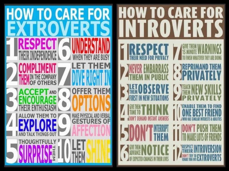 Introvert - Extrovert chart