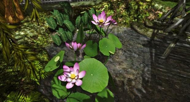 Botanical Sacred Lotus 1