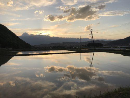 北アルプスと田園風景