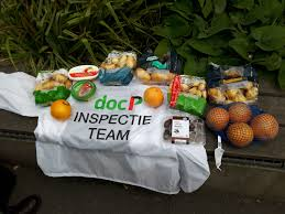 docp-inspectie-1