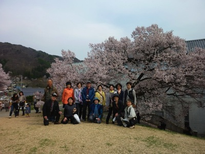 高遠の桜 3