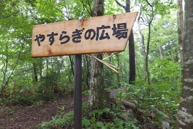 3熊にやられた標識