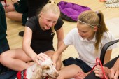 PuppyTherapy_09May2018-1099