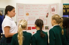 Gr6ScienceFair_04Jun2018-1536
