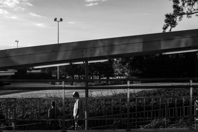 disney-world-monorail