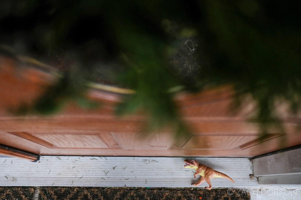 dinosaur at the front door