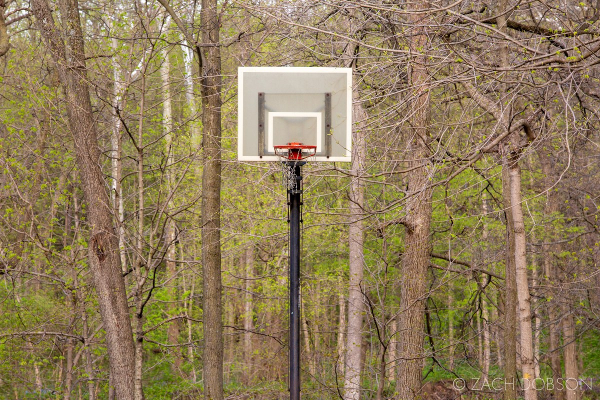 indiana basketball hoop by a forest in spring