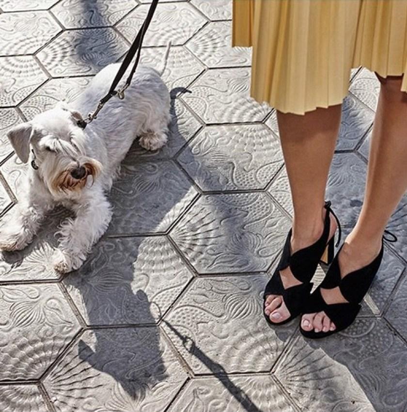 Zapatos de vestir de la marcha Carmela modelo 2019