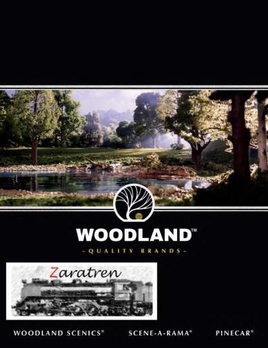 Woodland Scenic - catálogo Woodland Scenic 2018