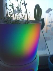 Regnbågens alla färger <3