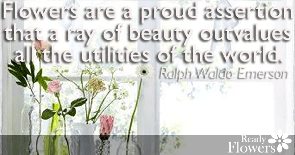 Assertion of beauty