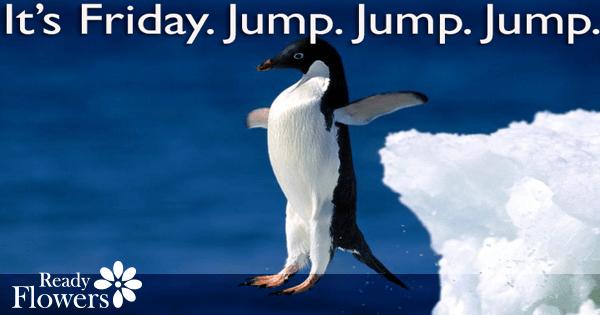 Friday jump