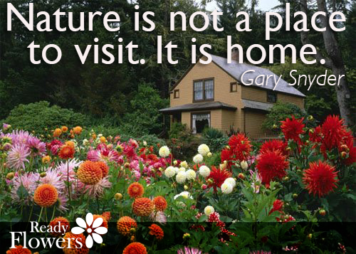 Nature is home.