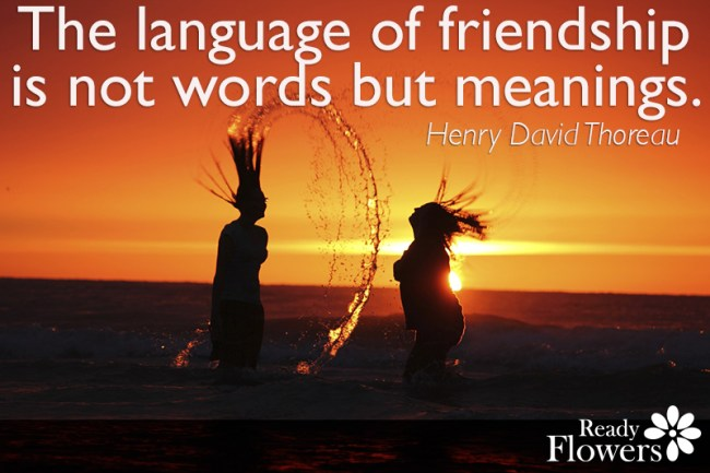 Language of friends