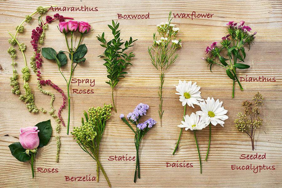 flower-crown-ingredients