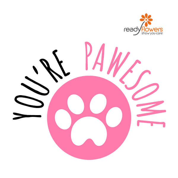 11 - Pawesome