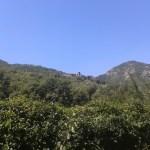 20150831 133141 s - Cascata di Moraduccio (Mappa)
