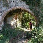 P8250897 FILEminimizer - Le Terme di San Michele alle formiche