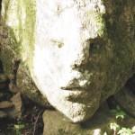 008 angolare - Settimo Andreoni : lo scultore dei boschi di Montemagno
