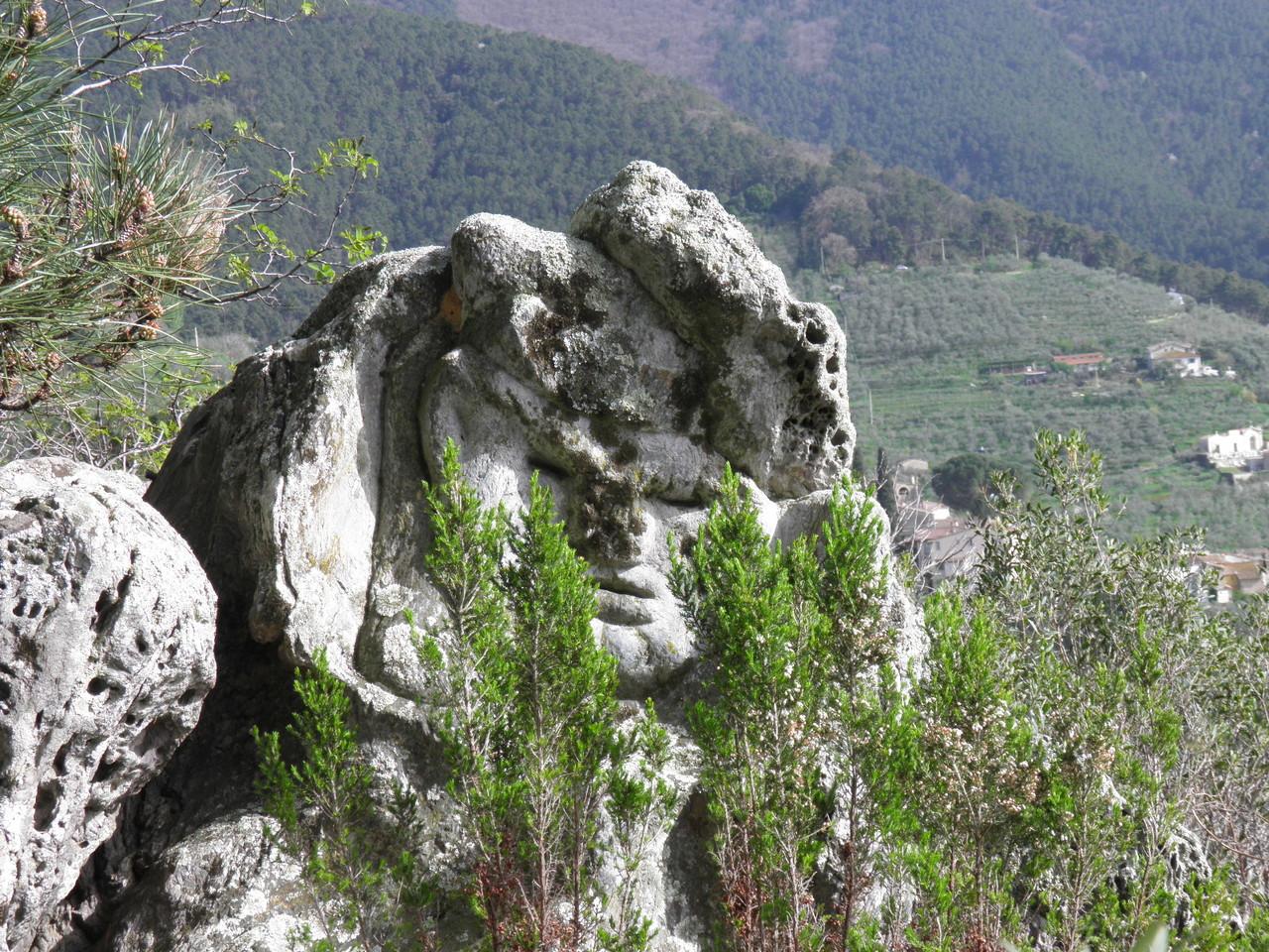 Settimo Andreoni : lo scultore dei boschi di Montemagno