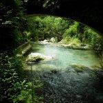 P6080185 - Candalla, il cuore verde dei monti del Camaiorese.