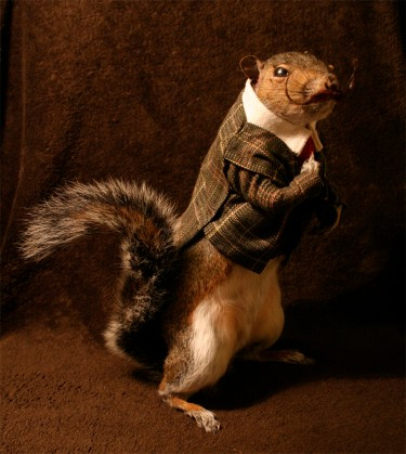 taxidermy_squirrel_with_pipe_and_moustache_by_amandas_autopsies-d4qqh5c