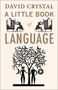 language_custom