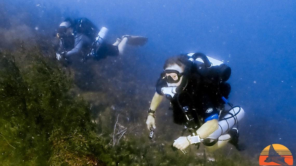 CCR Rebreather Diving Carriacou