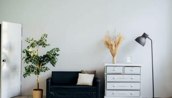 White dresser beside blue sofa and a potted plant