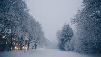 Boston, winter, activities