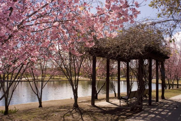 Lake Balboa Park Northridge LA