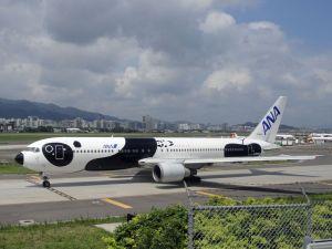 Aviones pintados para llamar la atención: segunda entrega