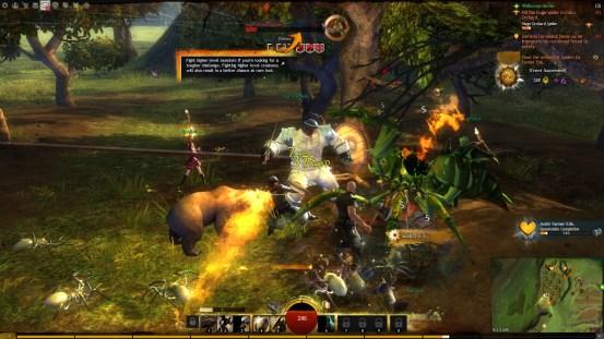 MMORPG Guild Wars 2 ArenaNet Placar Global