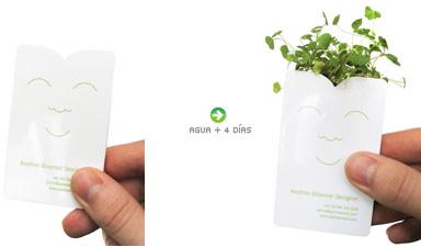 tarjetas-verdes.jpg