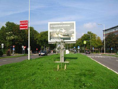 o_boom-voor-billboard4.jpg