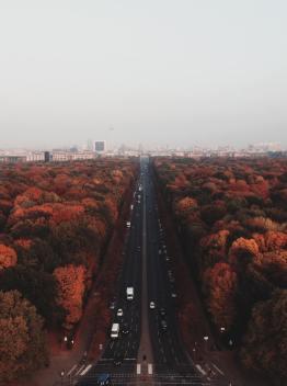 Haydée-Berlin automne