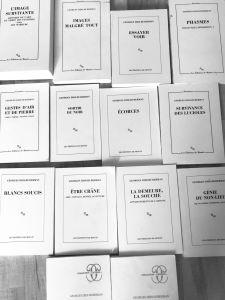Lecture/Rencontres Nappes-mondes - Georges didi