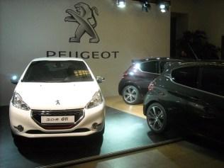 Peugeot 208 300 000 ex Poissy (38)