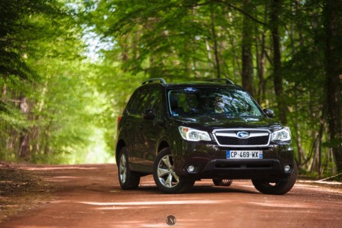 Forester 18