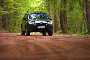 Forester 29