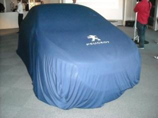 Maquette 208 Hybrid FE (8)