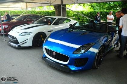 Goodwood Festival of Speed - Michelin