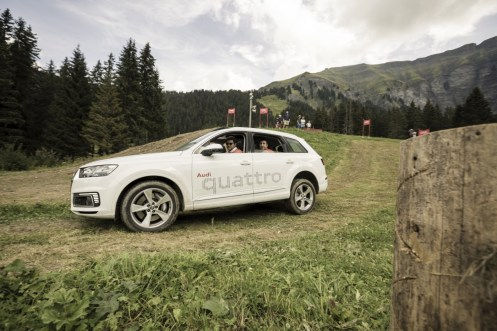rallye-audi-sport-2016-quattro-10