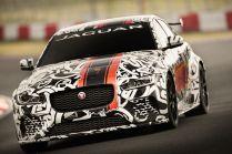 Jaguar Project 8 - 02