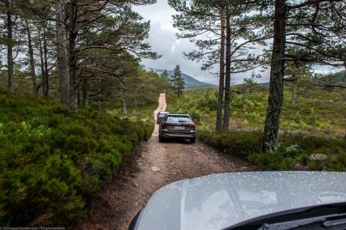 Audi A4 Allroad 2017 - Gonzague-60