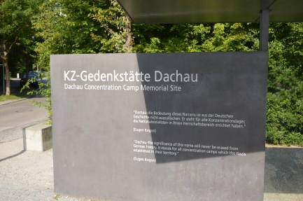 DSC_6847