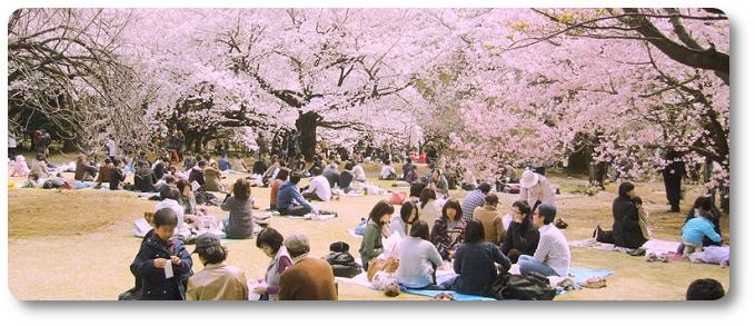 As Datas Comemorativas e Festividades no Japão