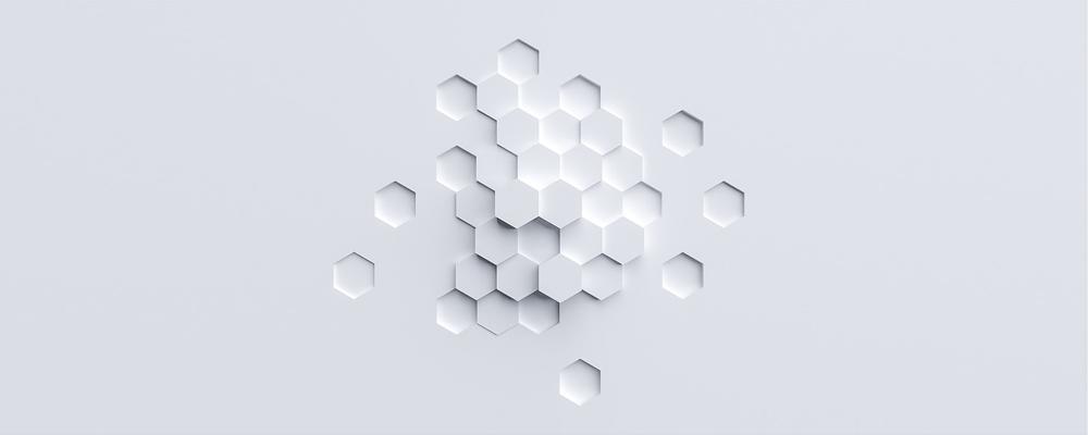 polygones_header_blogbionature