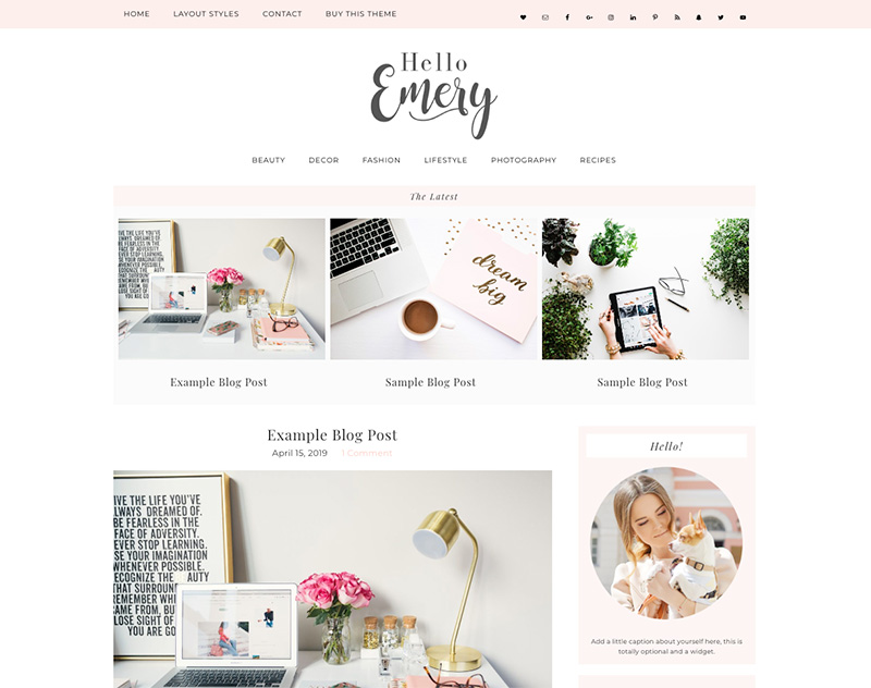 emery wordpress theme