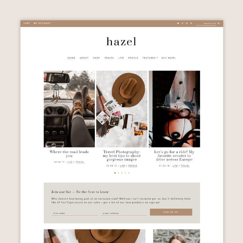 hazel wordpress theme